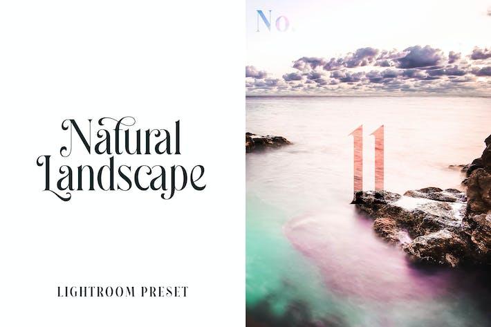 Пресет Lightroom - Природный ландшафт № 11