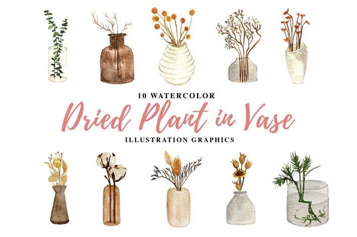 Thumbnail for 10 Aquarell getrocknete Pflanze in Vase Illustration