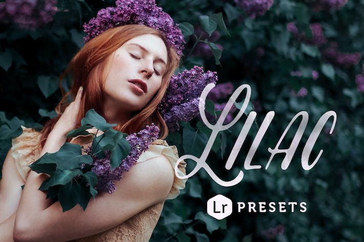 Thumbnail for Lilac Toning Lightroom Presets