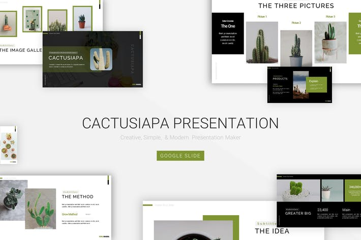 Cactusiapa - Google Slide Template