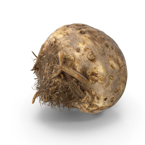 Thumbnail for Celery Root