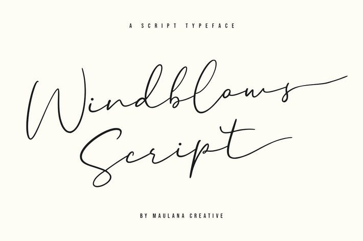 Thumbnail for Windblows Script Typeface