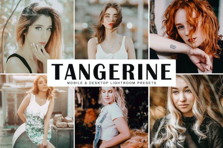 Cover Image For Tangerine Mobile & Desktop Lightroom Presets