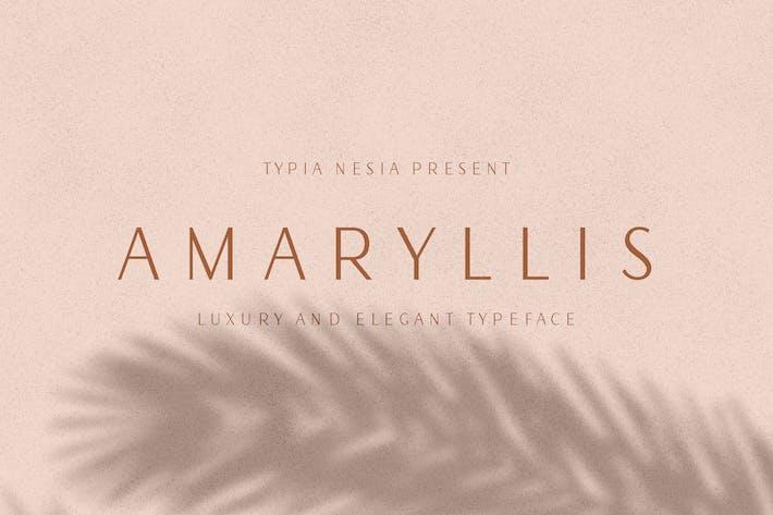 Thumbnail for Amaryllis Sans