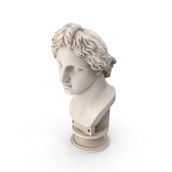 Thumbnail for Apollo Lykeios Bust