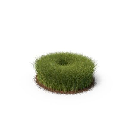 Gras mit Schmutz