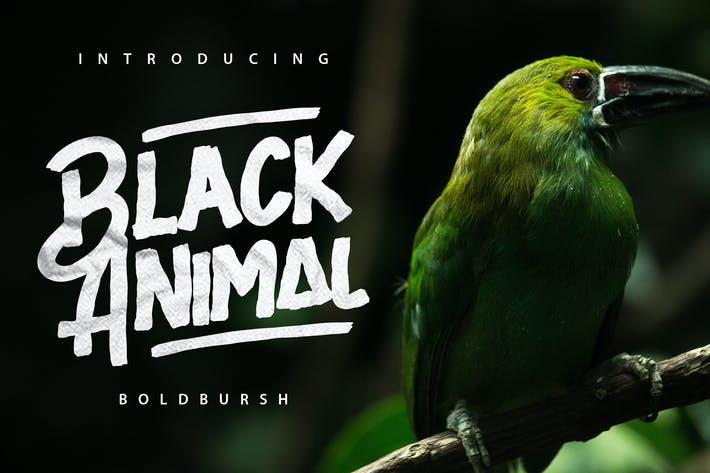Thumbnail for Black Animal