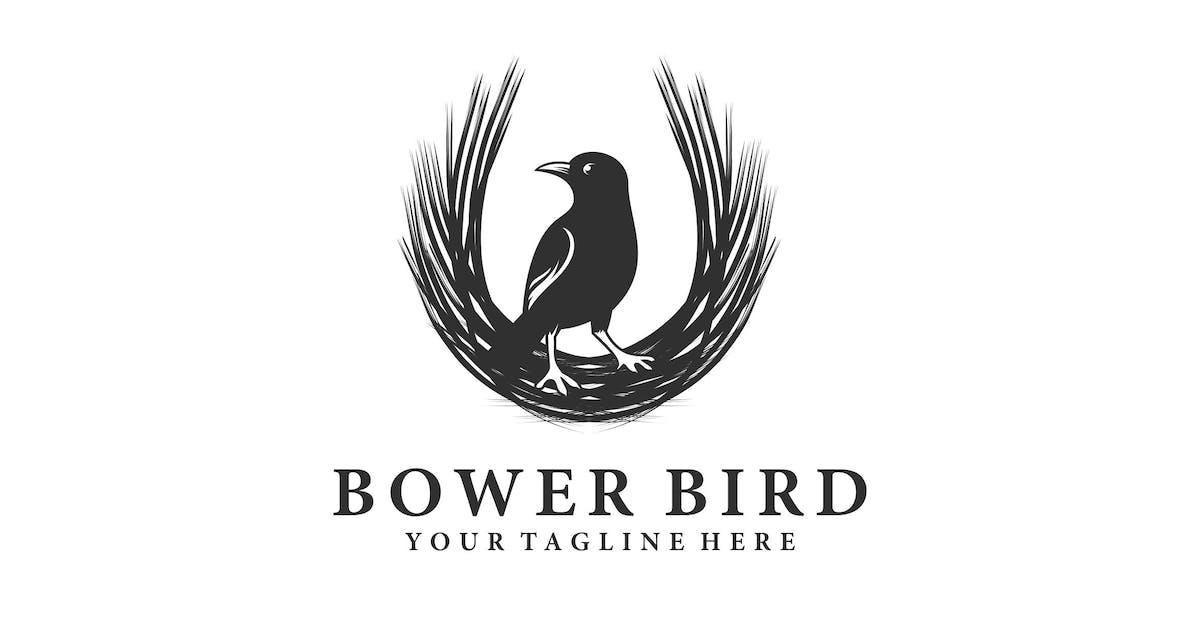 Download BOWER BIRD by artism_studio