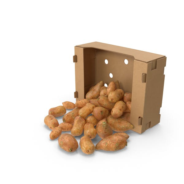 Thumbnail for Cardboard Box With Spilled Sweet Potato