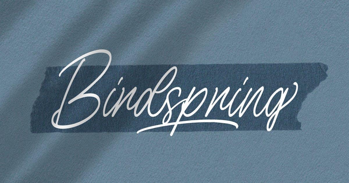Download Birdspring Signature by Rillatype