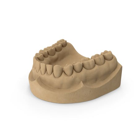 Zahnform