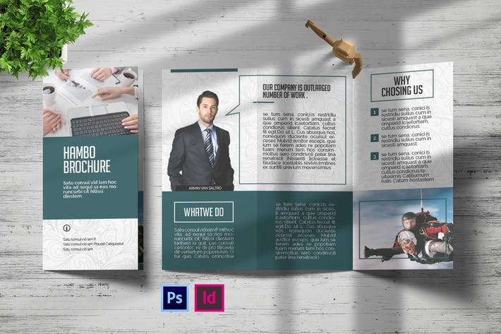 Thumbnail for Hambo | Trifold Brochure
