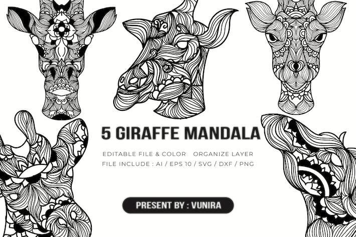 Thumbnail for 5 Giraffe Mandala | Design Illustration