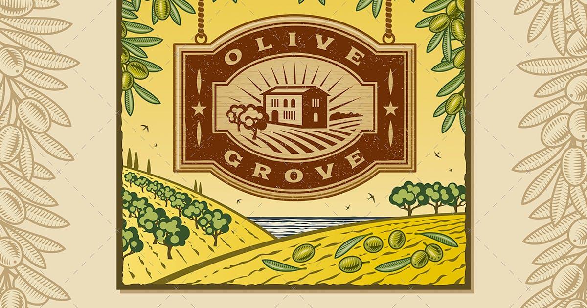 Retro Olive Grove by iatsun