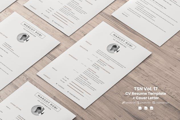 TSN CV Resume Template  Vol.17