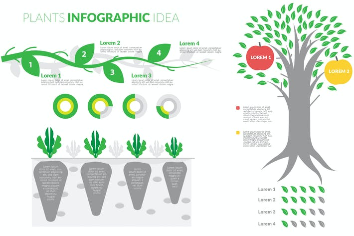 Thumbnail for Plants Theme Infographic