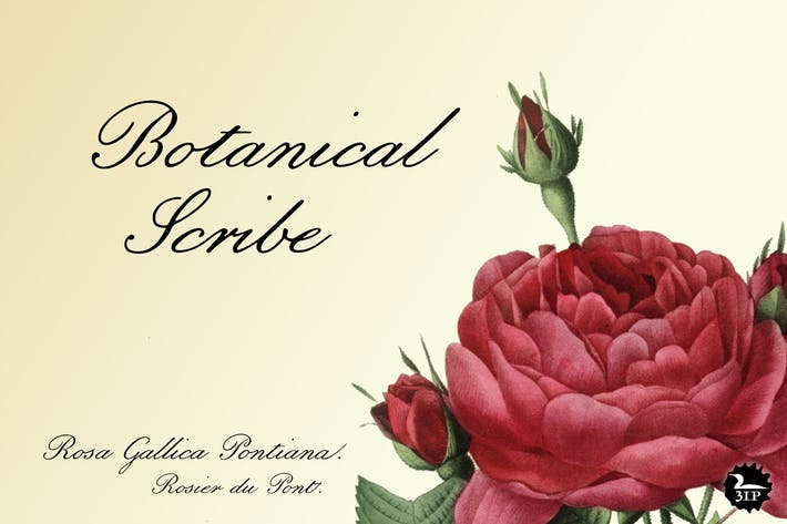 Thumbnail for Botanical Scribe