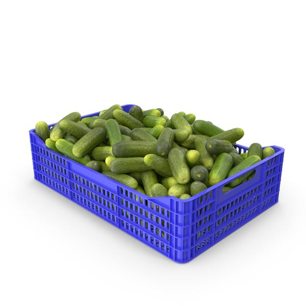 Thumbnail for Cucumbers Gherkin in Plastic Crate