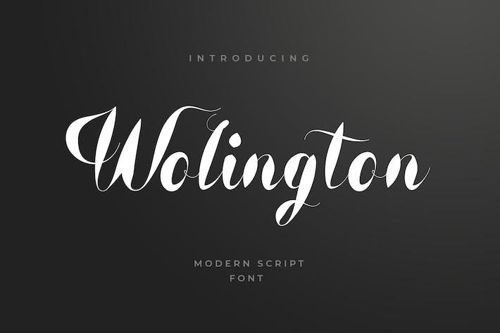 Thumbnail for Wolington Script Sans Font