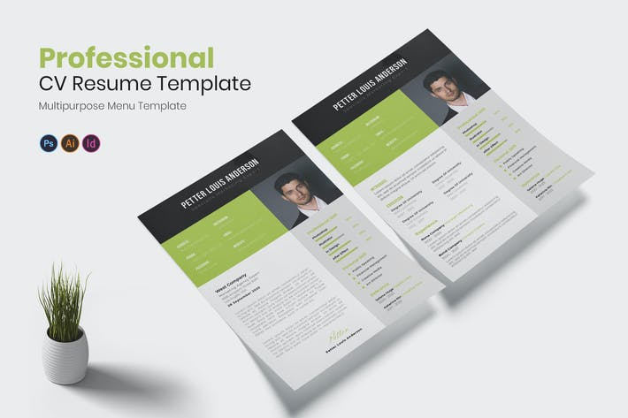 Thumbnail for Professional Resume CV Resume