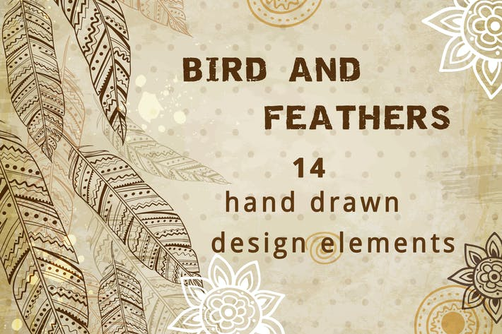 Thumbnail for Bird and Feathers