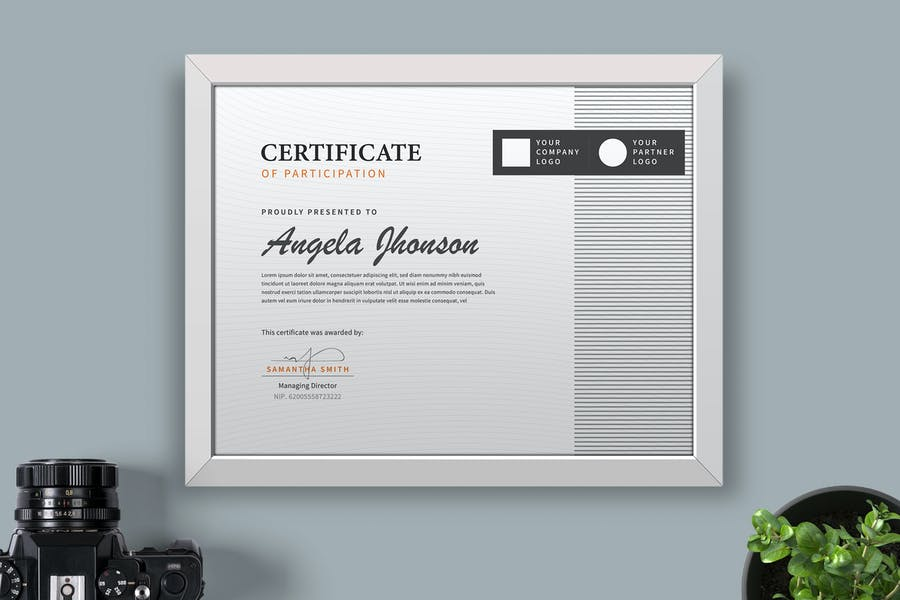 Certificate / Diploma Template Pro - product preview 0