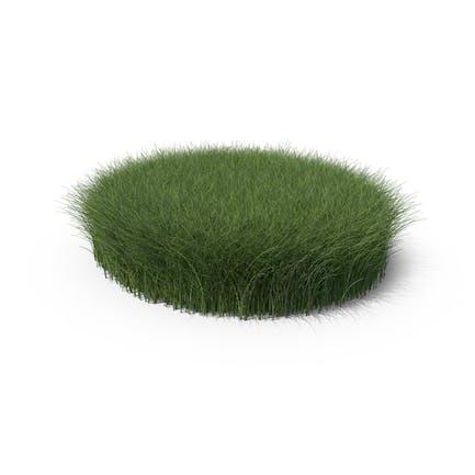 Hohe Grasform rund