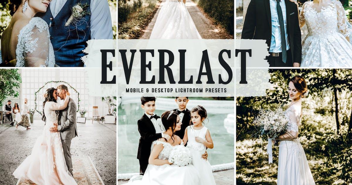 Download Everlast Mobile & Desktop Lightroom Presets by creativetacos