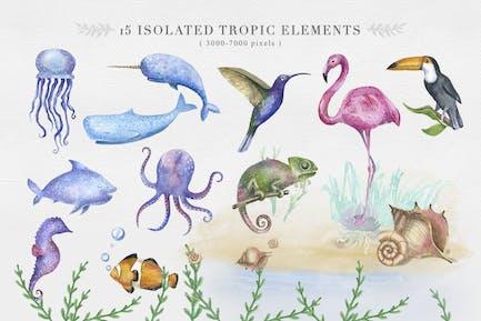 Ozean und tropisches Tier Clipart