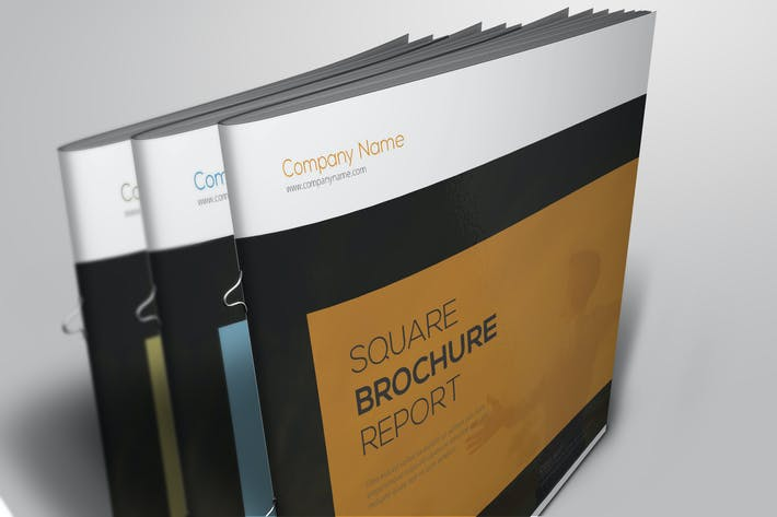 Thumbnail for Square Brochure Report