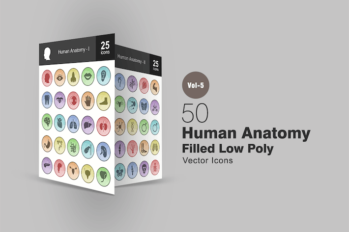 Thumbnail for 50 Human Anatomy Filled Low Poly Icons