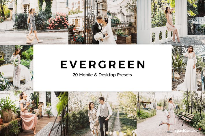 Thumbnail for 20 Evergreen Lightroom Presets & LUTs