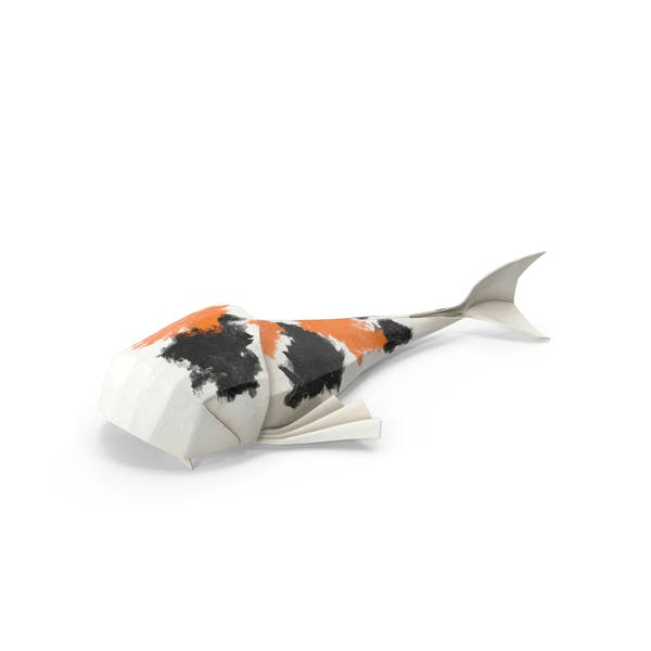 Cover Image for Koi Fish