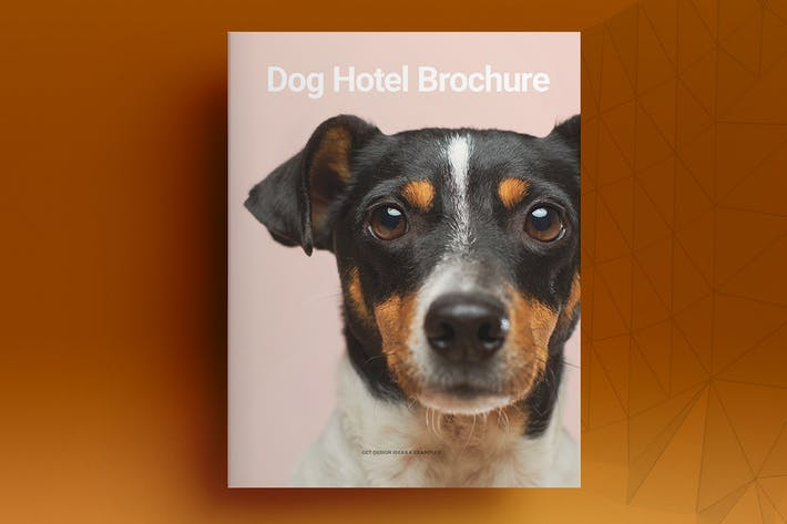 Thumbnail for Dog Hotel Brochure Template