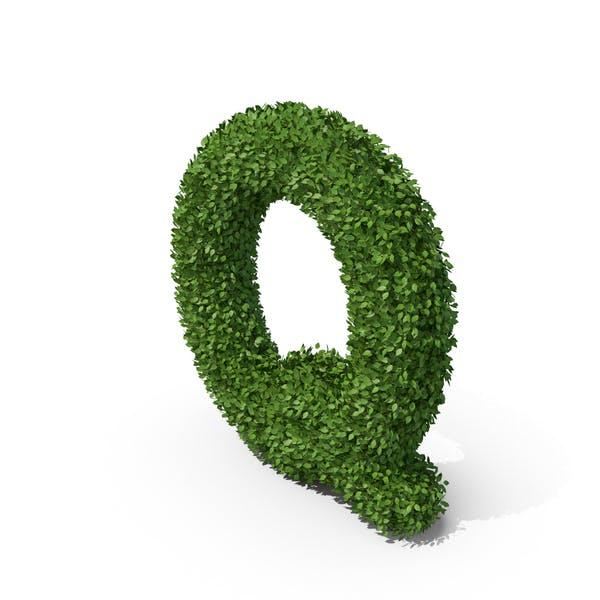 Hedge Shaped Letter Q
