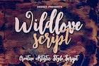 Wildlove Script Font