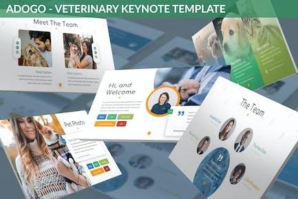 Adogo - Veterinary Keynote Template
