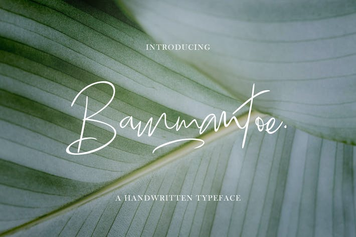 Bammantoe Tipo de letra