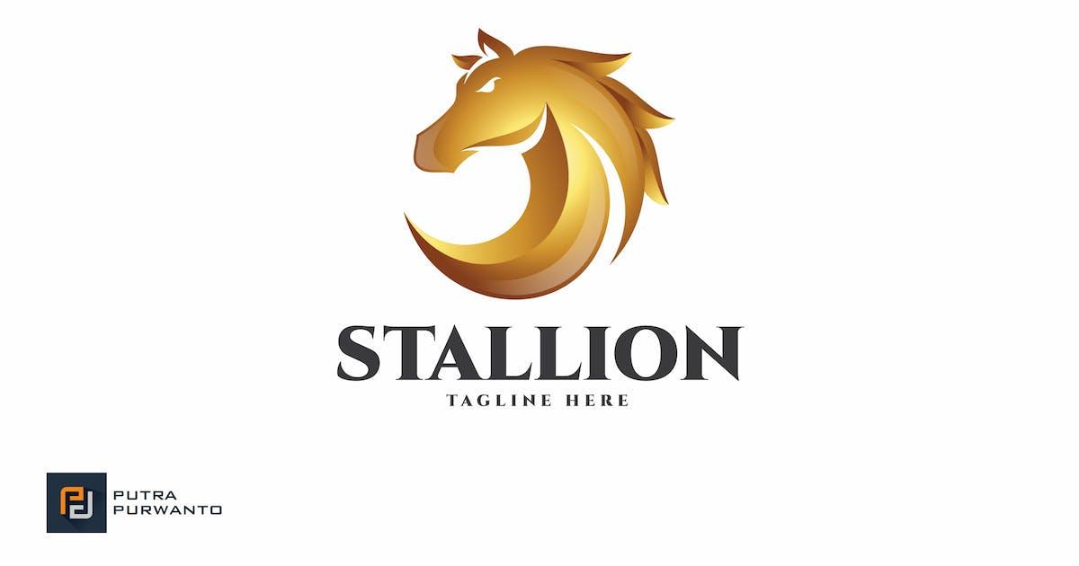 Stallion / Horse - Logo Template by putra_purwanto