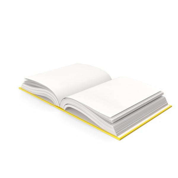 Buch Posen