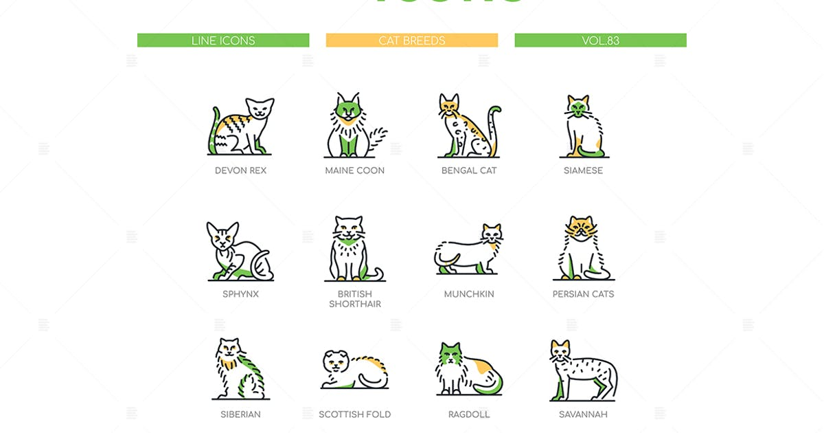 Download Cat breeds - modern line design style icons set by BoykoPictures