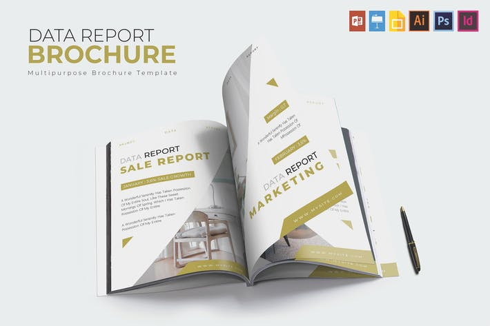 Cover Image For Data Report | Brochure Template