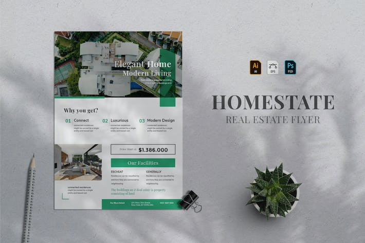 Thumbnail for Real Estate Flyer 05