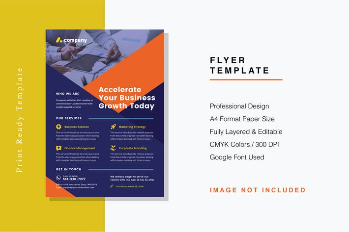 Thumbnail for Professional Flyer Template
