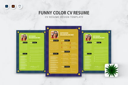 Funny Color CV Resume