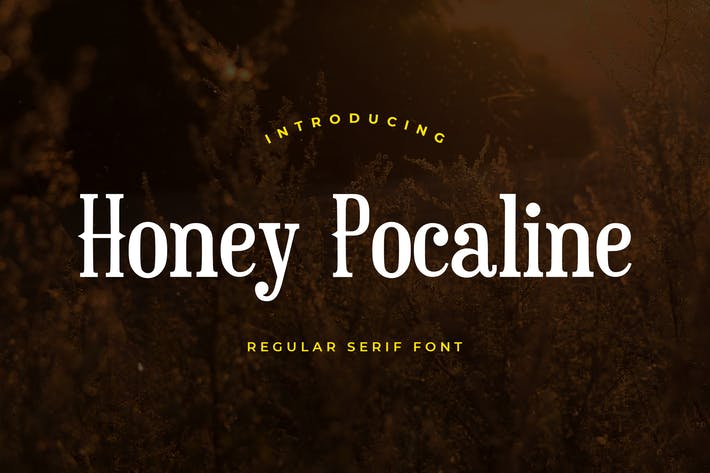 Thumbnail for Honey Pocaline Serif Font