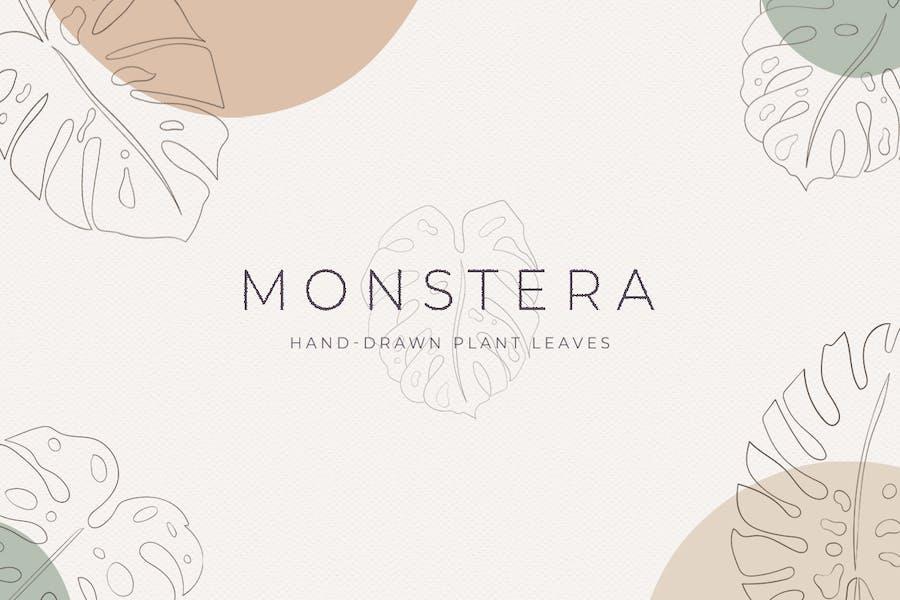Monstera Hand-Drawn Art Plant