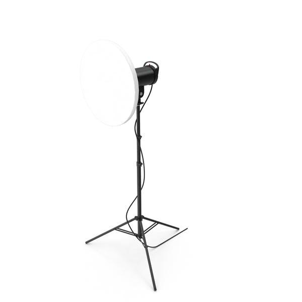 Beauty Dish Studio Monolight mit Gitter und Kopf auf Ständer