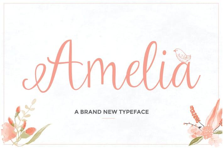 Thumbnail for Amelia Script
