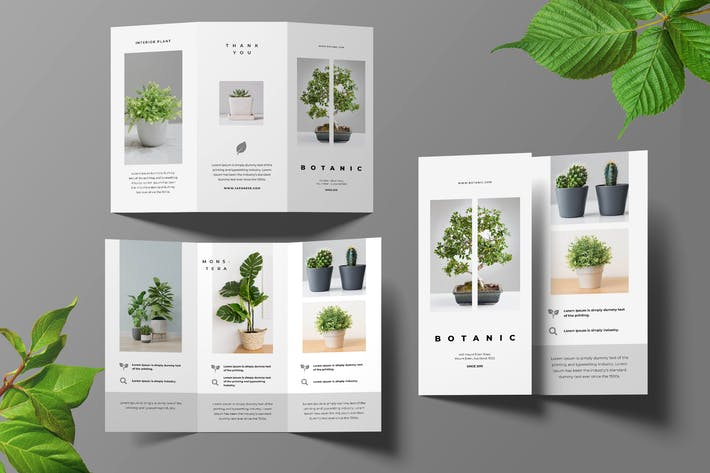 Thumbnail for Botanical Trifold Brochure